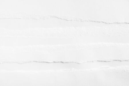 White clean torn paper texture background.