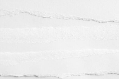 White clean ripped art paper texture background.