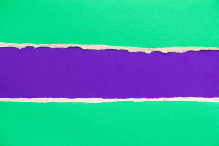 Green and purple violet torn and ripped sheet of cardboard paper texture background. Can be used for text.
