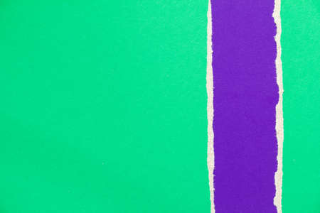Green and purple violet torn and ripped cardboard paper texture background. Can be used for text.