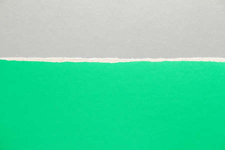 Green and silver gray torn sheet of cardboard paper texture background. Can be used for text.