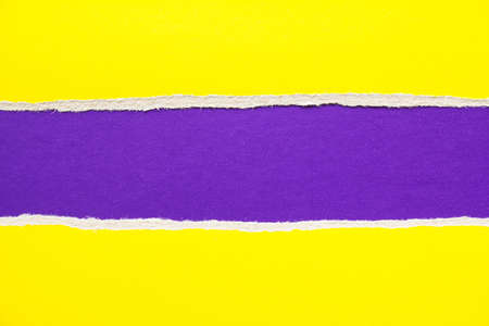 Purple and yellow torn and ripped sheet of cardboard paper texture background. Can be used for text.