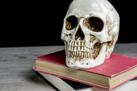 expertise: Close up of a skull placed on vintage books Stock Photo