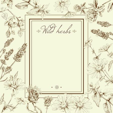 野の花とハーブのベクトル ヴィンテージ手描きのフレーム テンプレート イラスト。レイアウト、デザイン化粧品店、美容室、自然のモックアップ