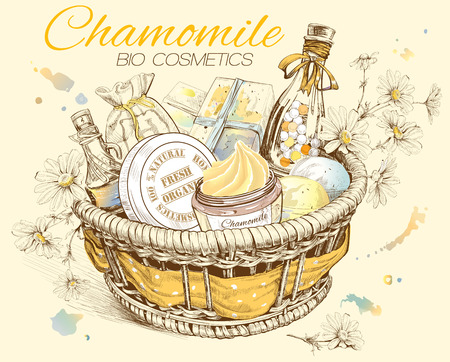 Chamomile natural cosmetic basket. Vector illustration