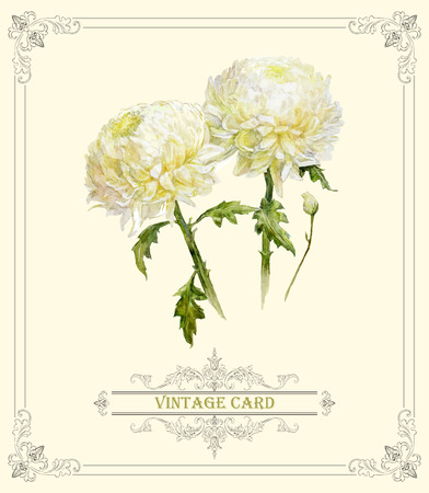 wedding bouquet: Hand drawn greeting card with watercolor bouquet of chrysanthemum. Can be used as invitation card for wedding, birthday and other holiday. Summer design element. Vector illustration Illustration