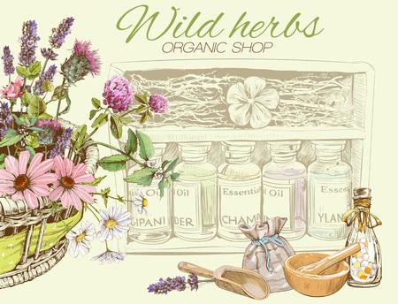 야생 꽃과 허브와 벡터 빈티지 배너입니다. 화장품, 상점, 미용실, 자연 및 유기 제품 디자인. 인사말 카드처럼 사용할 수 있습니다. 텍스트에 대 한 장 일러스트