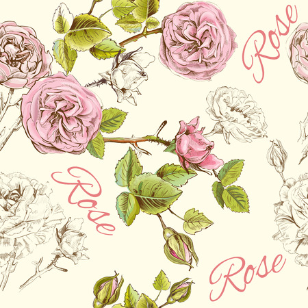 botanical garden: Vector vintage seamless pattern with rose flowers. Background design for cosmetics, store, beauty salon, natural and organic products.