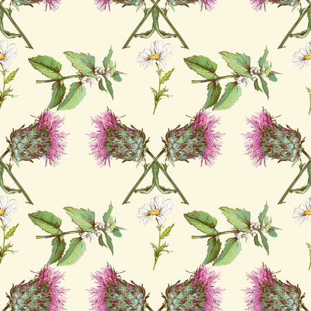 nettle: Vector vintage seamless pattern with wild flowers and herbs. Background design for cosmetics, store, beauty salon, natural and organic products.