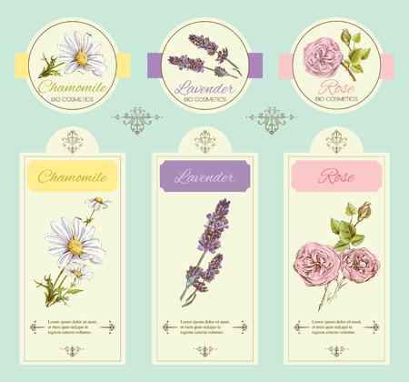 bandiera modello vintage con fiori selvatici ed erbe officinali. Design per cosmetici, magazzini, salone di bellezza, prodotti per la cura della salute, naturali e biologici.