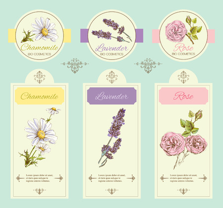 vintage template banner with wild flowers and medicinal herbs. Design for cosmetics, store, beauty salon, natural and organic, health care products.