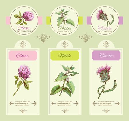 野生の花や薬草のビンテージ バナー。化粧品店、美容室、天然、有機の健康ケア製品のための設計します。