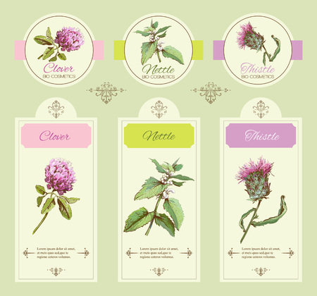 vintage banners with wild flowers and medicinal herbs. Design for cosmetics, store, beauty salon, natural, organic health care products Ilustração