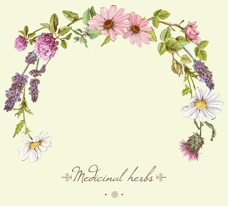 marco de la vendimia dibujados a mano con flores y hierbas silvestres. diseño de diseño para la cosmética, tienda, salón de belleza, productos naturales y orgánicos. Puede ser utilizado como ya Ilustración de vector