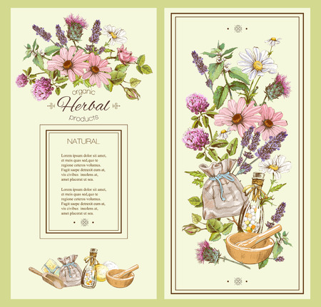 Vector vintage hand-drawn banner with wild flowers and herbs. Design for cosmetics, store, beauty salon, natural and organic products. Can be used like a greeting card. With place for text Vector Illustration