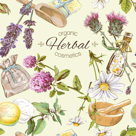 Vector seamless pattern with wild flowers and herbs. Background design for cosmetics, store, beauty salon, natural and organic products. Can be used as texture ,wrapping paper and fabric print Vettoriali