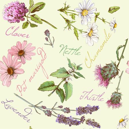 Vector seamless pattern avec des fleurs et d'herbes sauvages. Background design pour les produits cosmétiques, boutique, salon de beauté, naturels et des produits biologiques. Peut être utilisé comme texture, papier d'emballage et d'impression de tissu Vecteurs