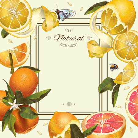 Vector vintage citrus frame with lemon, hibiscus and rose hip.Design for tea, juice, natural cosmetics, baking,candy and sweets with citrus filling,grocery,health care products. With place for text. Illustration