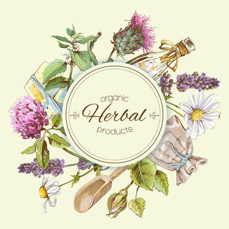 야생 꽃과 약초와 벡터 빈티지 배너입니다. 화장품, 상점, 미용실, 자연 및 유기, 건강 관리 제품을위한 디자인 일러스트