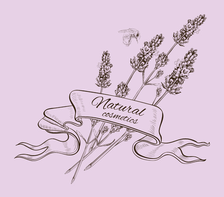 homeopathic: Lavender graphic natural cosmetics ribbon banner. Design for cosmetics, perfume, store, beauty salon, natural and organic health care products. Can be used as greeting card. Vector illustration