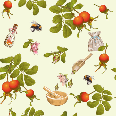 Vector herbal seamless pattern with rose hip berries.Background design for tea, homeopathy, herbal cosmetics, grocery,health care products. Best for fabric, textile, wrapping paper. Ilustração