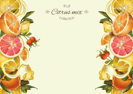 ベクトル レモン、ハイビスカスとローズヒップのビンテージ柑橘類のバナーです。お茶、ジュース、自然化粧品、パン、お菓子や柑橘類の充填、食