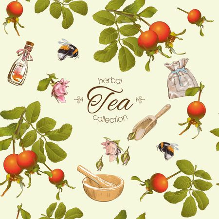 herbal cosmetics: Vector herbal tea seamless pattern with rose hip berries.Background design for tea, homeopathy, herbal cosmetics, grocery,health care products. Best for fabric, textile, wrapping paper. Illustration