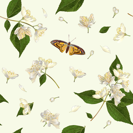 Vector seamless pattern with jasmine flowers. Background design for tea, aromatherapy, herbal cosmetics, essential oils,health care products. Best for fabric, textile, wrapping paper. Stock Illustratie