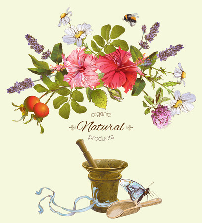 Vector natural products banner with hibiscus flowers, wild herbs and mortar. Design for cosmetics, herbal tea, perfume, store, beauty salon, natural and organic health care products.