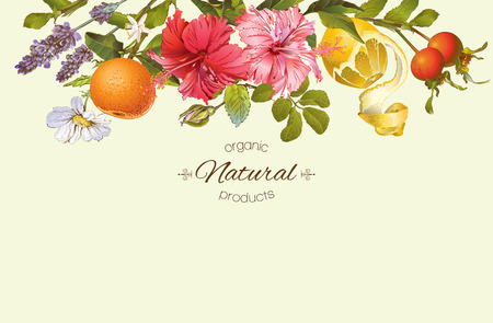 Vector vintage natural banner with hibiscus flowers, citrus fruits and rose hip. Design for tea, juice, natural cosmetics, baking,candy and sweets,grocery,health care products. With place for text. Stock Illustratie