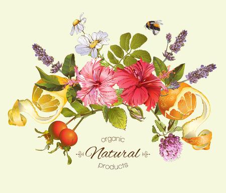 Vector natuurlijke compositie met hibiscus bloemen, citrusvruchten en rozenbottel. Ontwerp voor thee, sap, natuurlijke cosmetica, bakken, snoep en snoep, kruidenier, producten voor de gezondheidszorg. Met plaats voor tekst.