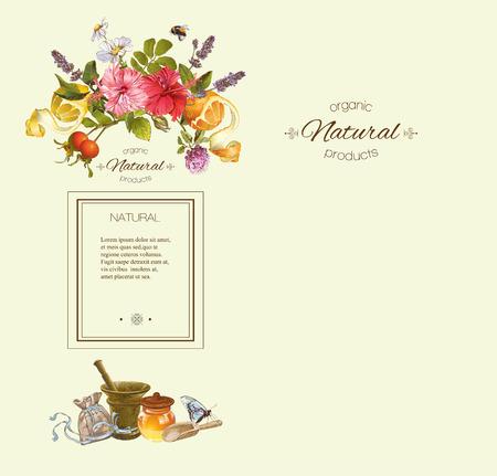 Vector kruiden verticale banner met mortel, fruit bloemen en honing. Ontwerp voor thee, sap, natuurlijke cosmetica, bakken, snoep en snoep, kruidenier, producten voor de gezondheidszorg. Met plaats voor tekst. Vector Illustratie