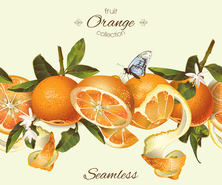 Vector orange seamless banner. Background design for juice, tea, natural cosmetics, bakery with orange filling, farmers marcet, grocery ,health care products. Best for fabric, textile, wrapping paper.