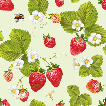 Vector strawberry seamless pattern. Background design for tea, juice, natural cosmetics, sweets and candy with strawberry filling, farmers marcet,health care products. Best for textile,wrapping paper.