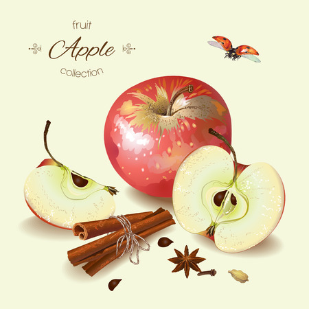 Vector realistic illustration of red apple with cinnamon. Isolated on light green background. Design for tea, ice cream, cosmetics, candy and bakery with black apple filling, health care products.