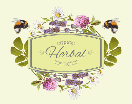 wild flowers and herbs with bumblebees. Design for herbal tea, natural cosmetics, honey, health care products, homeopathy, aromatherapy. Can be used as design