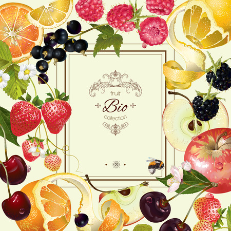 vintage fruit and berry frame. Design for vegeterian menu, tea, ice cream, juice, jam, natural cosmetics, candy and bakery with fruit filling, health care products. With place or text Stock Illustratie