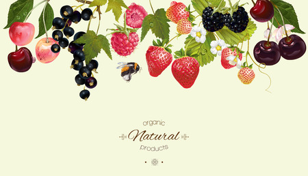 berry horizontal border. Background design for juice, tea, natural cosmetics, bakery with berry filling, farmers market, grocery ,health care products. Best for packaging design.