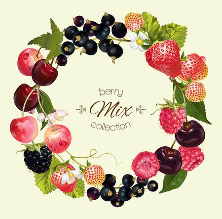 Beere rund Kranz Rahmen mit Himbeere, Kirsche, Erdbeere und schwarzen Johannisbeeren. Entwurf für Naturkosmetik, Beauty-Shop, vegetarisches Menü, Bio-Gesundheitspflegeprodukte, Aromatherapie, Parfüm