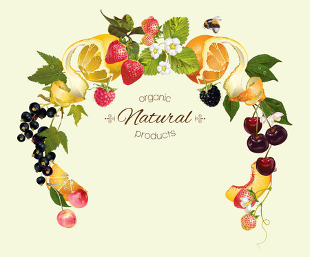 berry and fruit round wreath frame. Design for tea, ice cream, jam, natural cosmetics, candy and bakery with fruit filling, health care products, perfume.