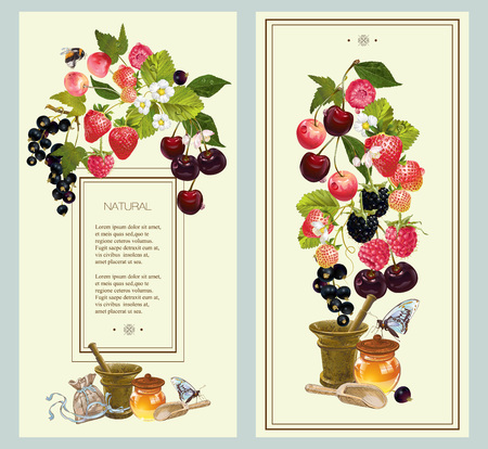 black berry: berry vertical banners with raspberry, cherry, strawberry and black currant. Design for natural cosmetics, beauty store, vegetarian menu, organic health care products. With place for text