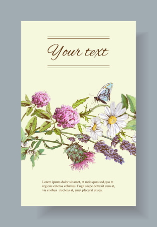 nettle: wild flowers and herbs banner. Design for herbal tea, natural cosmetics, honey, health care products, homeopathy, aromatherapy. With place for text Illustration