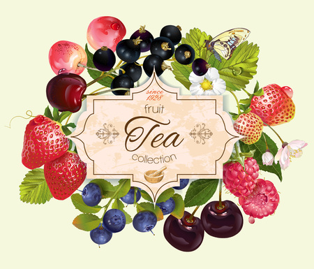 cream and green: berry tea vintage banner. Design for tea, natural cosmetics, beauty store, dessert menu, organic health care products, perfume, aromatherapy. Illustration
