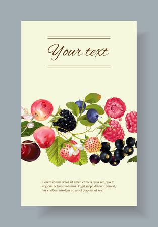 mix berry banner. Design for tea, natural cosmetics, beauty store, dessert menu, organic health care products, perfume, aromatherapy. With place for text Stok Fotoğraf - 62131294