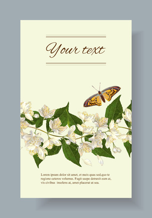homeopathy: jasmine flowers banner. Design for tea, natural cosmetics, beauty store, organic health care products, perfume, essential oil, homeopathy, aromatherapy Illustration