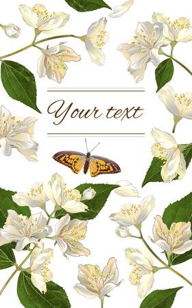 ベクトルのジャスミンの花の垂直バナー。茶、自然化粧品、美容店、有機のヘルスケア製品、香水、エッセンシャル オイル、ホメオパシー、アロマ
