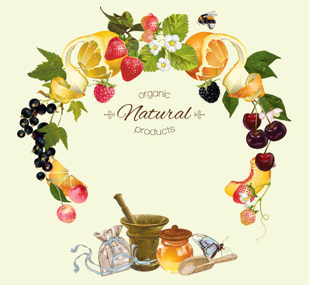 recipe book: Vector fruit and berry cosmetic banner with honey and mortar. Design for natural cosmetics, health care products, aromatherapy, homeopathy, grocery, recipe book. With place for text