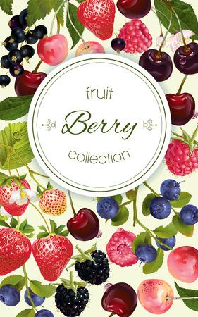 Vector mix berry bannière verticale. Conception pour le thé, les cosmétiques naturels, magasin de beauté, carte des desserts, produits de soins de santé organiques, parfum, aromathérapie. Avec place pour le texte