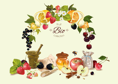 Vector fruit and berry cosmetic composition with fruit wreath . Design for natural cosmetics, health care products, aromatherapy, homeopathy, recipe book. With place for text Çizim