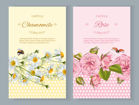 natural cosmetics vertical with flowers. Design for cosmetics, store, beauty salon, natural and organic products, health care products, aromatherapy. With place for text